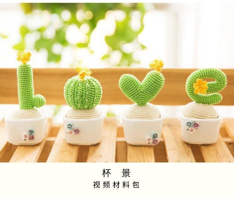 Кактусы LOVE