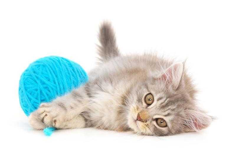 Польза вязания крючком для здоровья и жизни